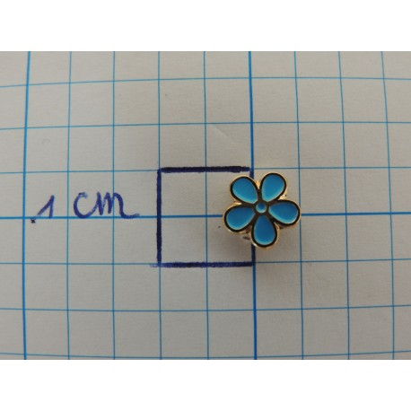 Pin forget-me-not